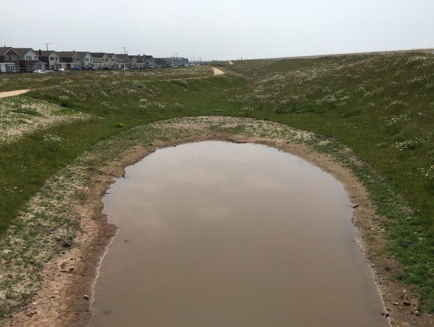 The new pond at Larkholme Grasslands. Rossall CoastalDefence Scheme
