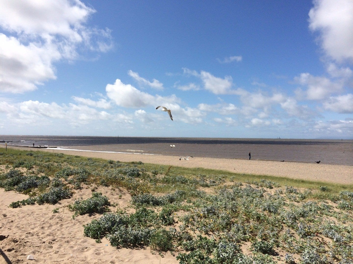Beach at Fleetwood, Site of Special Scientific Interest