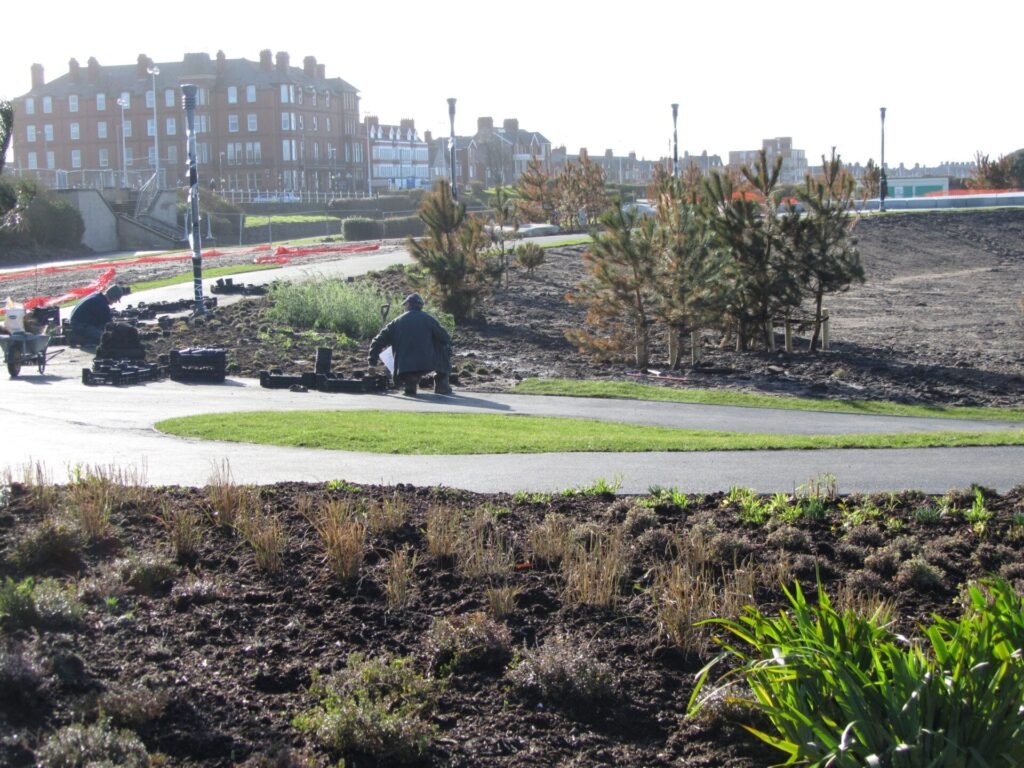 Planting underway at Marine Gardens, February 2012