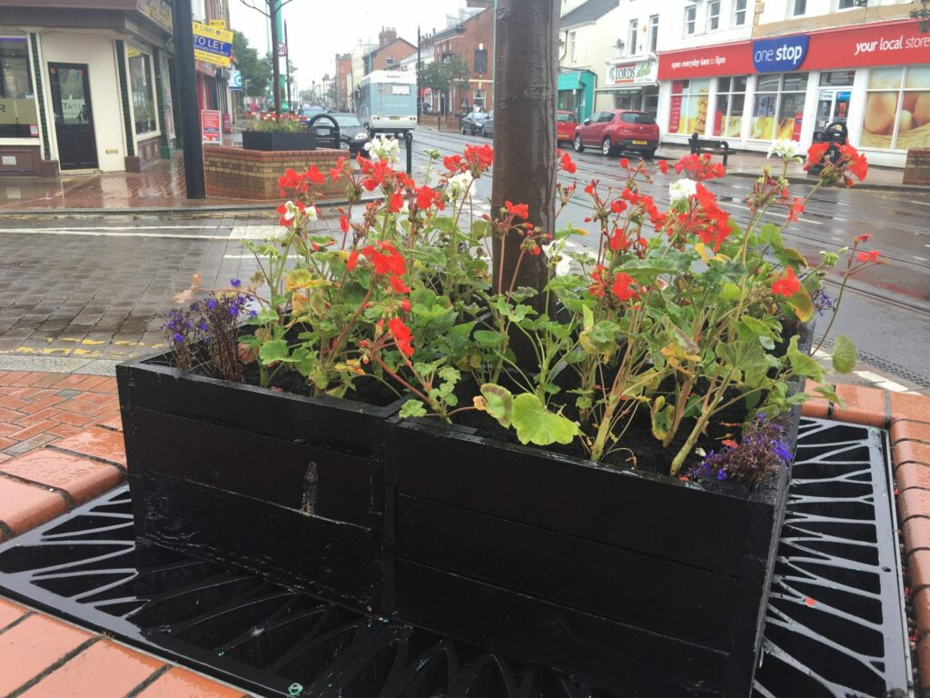 Flowers for Fleetwood in Bloom 2016