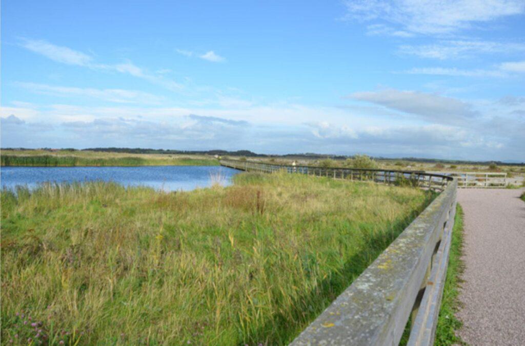 Fleetwood Marsh Nature Park